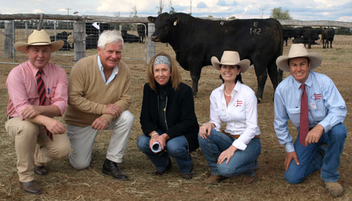Elders auctioneer Andrew Meara, Toowoomba and buyers of the $12,000 top-priced Glenoch Ethan E142 (AI), Don and Liz Cossart, Dilbong Pastoral Company, Tara with Kate and Justin Boshammer, Sandon Glenoch Angus, Chinchilla.