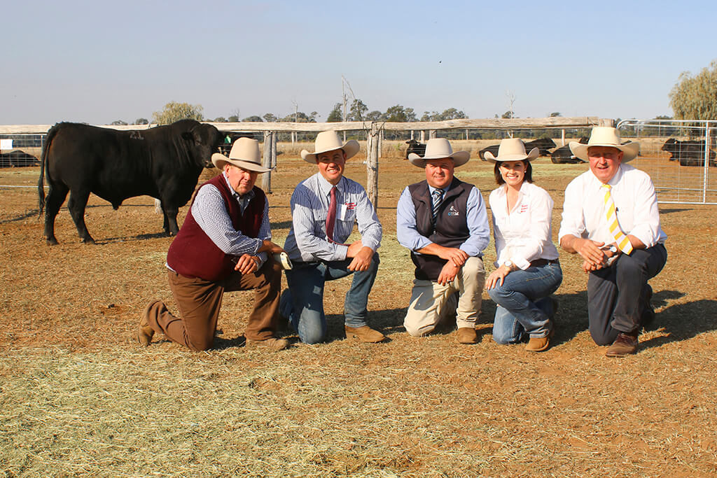 The $17,000 top priced bull was lot 21, Glenoch-JK Minister M640. Purchaser Greg Peck, Purtora, Blackall is pictured with vendors Justin and Kate Boshammer, JK Cattle Company, Condamine, Michael Glasser, Glasser Total Sales Management, and Roger Lyne, Ray White Eastern Rural, Dalby.
