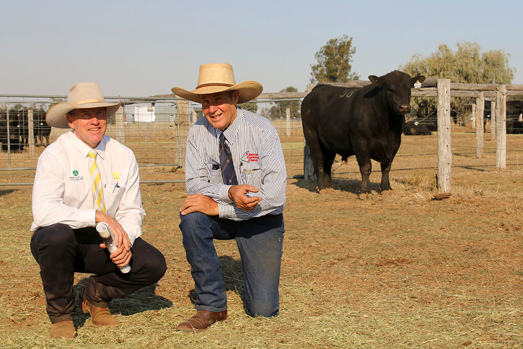 Bruce Birch, Ray White with Roger Boshammer and the second top priced bull at $16,000, lot 58, Glenoch Maximerge M499 (AI)